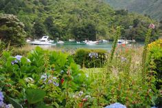 Large comfortable bach right on West Bay in Lochmara Bay, Queen Charlotte Sound | Bookabach