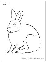 learn how to draw a arctic hare antarctic animals step by step drawing tuto animal. Black Bedroom Furniture Sets. Home Design Ideas