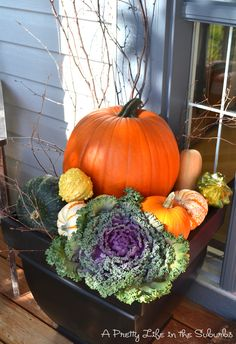 Fall Porch ideas- Sticks, gourds, flowering cabbage.