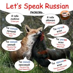 Любовь How To Speak Russian, Learn Russian, Learn English, Russian Language Learning, Language Study, Russian Lessons, Class Tools, English Words, Teaching Science