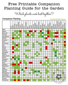 Gardening Ideas: Companion Planting Guide--Which Garden Plants Grow Well Together? {OneCreativeMommy.com} Free Printable