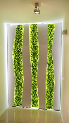 Tv Wall Design, Floor Design, Green Wall Art, Green Walls, Estilo Interior, Vertical Garden Wall, Tv Wall Decor, Clinic Design, Cafe Interior Design