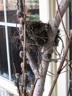 Image detail for -Sense and Simplicity: Front Porch Spring Decorations