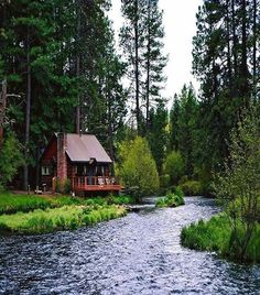 Ahhh a perfect little cabin! Lake Cabins, Cabins And Cottages, Mountain Cabins, Little Cabin, Log Cabin Homes, Cozy Cabin, Cabins In The Woods, My Dream Home, Future House
