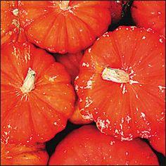 Rouge Pumpkins