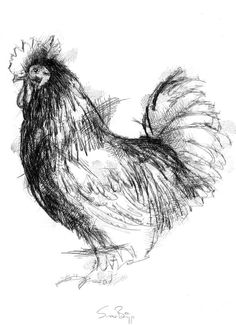 Drawing of a rooster Realistic Animal Drawings, Bird Drawings, Art Drawings Sketches, Charcoal Sketch, Charcoal Art, Bird Sketch, Sketch A Day, Hahn Tattoo, Scribble Art