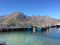 Hout Bay, is located about 30-minutes driving from the Cape Town City Centre.  This charming and colorful harbour is also well-known to hosts seals. Moreover, the Bay Habour Market opened during wek-ends is a fantastic place to discover the local art and craft and have a delicious snack listening to lively music! Boulder Beach, Atlantic Ocean, Cape Town, Seals, Bouldering, The Locals, Centre, Tours, Colorful