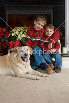 Fireplace Family Portraits   Family Holiday Christmas Card Portrait, Brothers, Dog, Fireplace, Fire ...