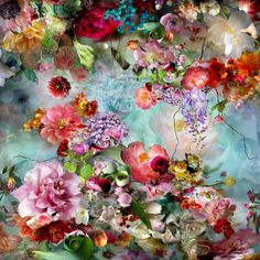 I'll be your summer picture from the series Distorted Nature by Isabelle Menin, artist of category FINE WORKS at photo art editions LUMAS Art Floral, Collage Kunst, Photo D Art, Art En Ligne, Vector Flowers, Botanical Art, Love Art, Oeuvre D'art, Land Scape