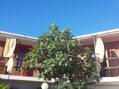 Location vacances maison Joppolo