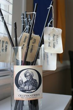 ollivanders wands (could make them pens)