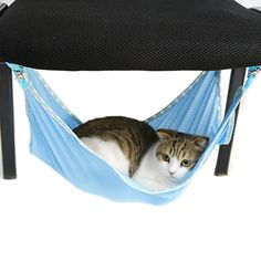 Pet Cats Breathable Mesh Hammock Mat Bed Pet Cage/Chair Hammock for Cats Ferret Rat Chinchilla Rabbit Small Dogs ** Read more reviews of the product by seeing the web link on the image. (This is an affiliate link). Chinchilla, Ferret, Cat Cages, Pet Cats, Hammock Chair, Rats, Small Dogs, Pet Supplies, Rabbit
