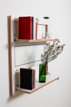 Customizable Wall Mounted Shelving From AMBIVALENZ Photo
