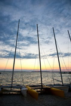 Learning to sail a catamaran and then renting it to explore the bays around Ocean City is the perfect way to spend an evening! Check out Coastal Kayak for rentals. #ocmd