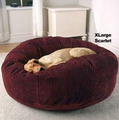 Drs. Foster & Smith Deluxe Warm & Cuddly Slumber Ball for dogs...hey, I want one too! They come x-small to x-large.