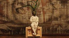 A Avoe cria peças de arte através de vasos diferentes com plantas aéreas. Cada obra é feita 100% à mão e contém uma história exclusiva sobre um personagem.