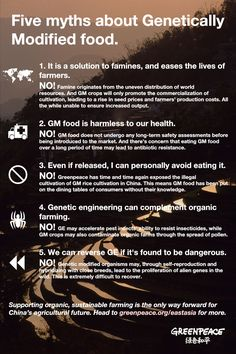 Myths about Genetically Engineered Foods...(I wonder what the opposing argument says? Does science agree?)