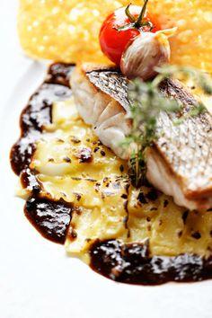 Recette : Denti sur peau cuisson à la plancha, lasagnettes à la Fourme d'Ambert, jus de daube de joues de boeuf au vin rouge