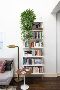 This CB2 bookshelf is the perfect perch for plants and books alike.