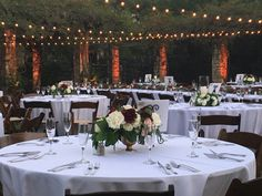 Botanical Gardens Amphitheater Botanical Gardens, Table Settings, Table Decorations, Lighting, Home Decor, Homemade Home Decor, Table Top Decorations, Place Settings, Lights
