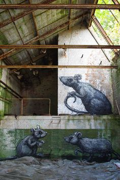 BY ROA                                                                                                                                                                                 More