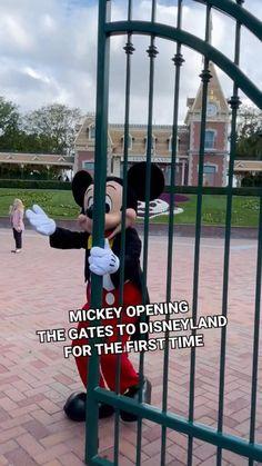 DISNEYLAND IS OPEN!!!! Disney Planning, Love You, My Love, Disney Disney, Disney Vacations, Anime Guys, First Time, Disneyland, Everything
