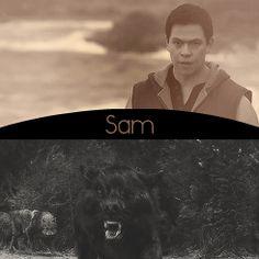 #TwilightSaga - Sam Uley