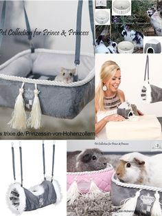 For rodent-Prince! Für Nager-Prinzen! Pet collection by Maja Princess von Hohenzollern/Trixie donates to animals in need. #vegan http://www.tiierisch.de/produkte/maja-prinzessin-von-hohenzollern-kleintiere