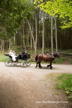 Gough wedding carriages on Mackinac Island Michigan #MackinacIsland #PureMichigan