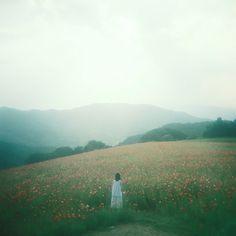 Film Photo By: Yuko Mori  Bronica S2, Kodak PortraFlickr