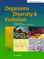 #geoubcsic Fossil Monotomidae (Coleoptera: Polyphaga) from Laurasian Cretaceous amber. Peris, D; Delclos, X. ORGANISMS DIVERSITY & EVOLUTION V.15(2):333-342. [2015]. Three new species of root-eating beetle (Coleoptera: Monotomidae) in Cretaceous amber from Spain (Albian) and Myanmar (Cenomanian) are described. Rhizophtoma longus sp. nov. is a Spanish monotomid of the tribe Rhizophtomini, previously only known from Lebanese amber (Aptian). The Cretakarenniini tribe nov. is created to…