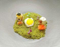Eggs quail texturs