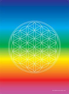 Die Blume des Lebens, Urmuster allen Lebens, auf den Farben des Regenbogens, dem Farbspektrum des Lichts. Eine äußerst kraftvolle Kombination für Harmonie und Lebensfreude.