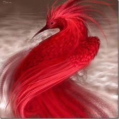 Bird of Paradise King Bird-of-paradise, male Beautiful Waimanu Valley, Hawaii. This looks like Paradise. Pretty Birds, Love Birds, Beautiful Birds, Animals Beautiful, Cute Animals, Exotic Birds, Colorful Birds, Funny Bird, Kinds Of Birds