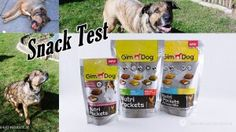 GimDog Snack Test - Susi und Kay Projekte