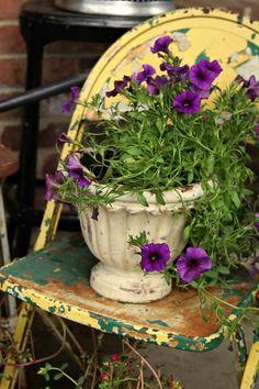 rusty chairs and pots make great porch flower planters Container Flowers, Flower Planters, Flower Pots, Glue Gun Projects, Bird Bath Planter, Faux Succulents, Paint Cans, Plant Holders, Purple Flowers
