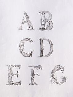 Animalpha on Typography Served