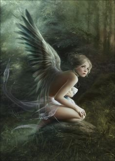 Fairy in the forest.