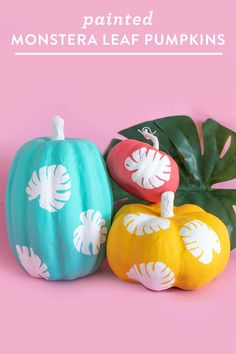 DIY Monstera Leaf Pumpkins - Sarah Hearts