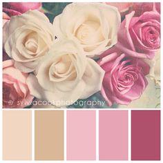 color pallet for girls room
