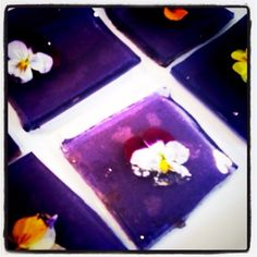 Violette aphrodisiac jello shots with fresh pansies on top...they'll make u crazy #cocktails #pansies