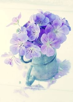 Purple Flower Card Blank Photo Card Turquoise and door JudyStalus, $5.00