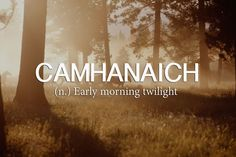 "Because we all need a way to say ""early morning twilight."""