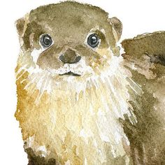 This River Otter is a giclée reproduction of my original watercolor painting. Landscape/horizontal orientation.  Printed on fine art paper using archival pigment inks. This high quality cotton paper makes it hard to tell the original painting from the print! This quality printing allows over 100 years of vivid color in a typical home display. Prints are sent in cellophane sleeve with cardboard in a sturdy mailer to protect it while shipping.  The paper measures 8.5x11 and has a slight white…