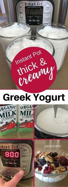 Instant Pot/Greek Yogurt/Easy & Yummy!