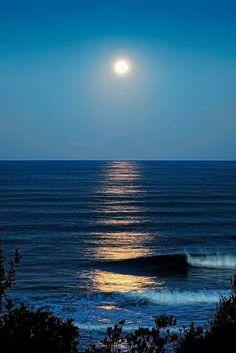 ◾◾il mare calmo della sera ◾◾ buona serata cari amici - Cinzia Ambrogi - Google+