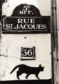 Paris - Rue Saint Jacques was the street where I lived, in a little flat with seventeenth-century timber beams. Saint Jacques, I Love Paris, Street Signs, Paris Street, Paris Paris, Paris Travel, Belle Photo, Cat Art, Black And White
