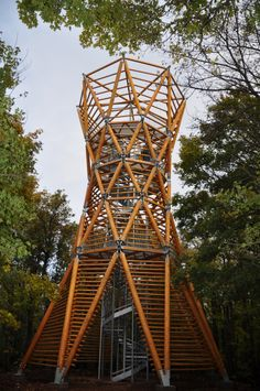 Timber Architecture, Timber Buildings, Landscape Architecture, Landscape Design, Architecture Design, Bamboo Structure, Public Space Design, Lookout Tower, Cool Tree Houses