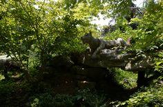 Bill Duncan-White Oak Landscaping (25) | Flickr - Photo Sharing!