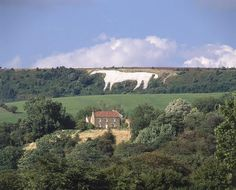 Kilburn White Horse, North Yorkshire  Length: 97 m (318 ft)     Covering around 1.6 acres, the Kilburn White Horse is visible from the East Coast railway line south of Thirsk and from the A19. It was created in 1857 after a local resident was inspired by a visit to the White Horse at Uffington